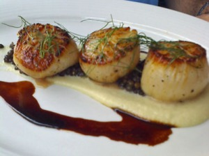 maine diver scallops, fennel puree, lentil salad, pernod poultry jus
