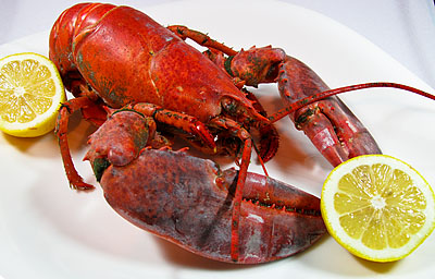 Lobster Gram is a top-rated lobster, seafood and gourmet food gift delivery service. It provides a product line that includes lobsters, seafood, steaks and more. Also, Lobster Gram offers a wide range of discounts and promo codes to help shoppers buy one 90%(68).